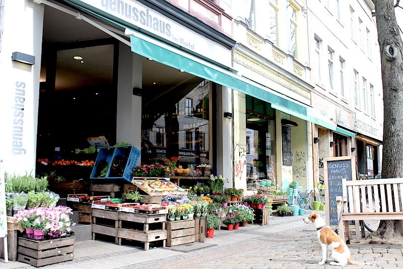 Cookasa Bremen 13