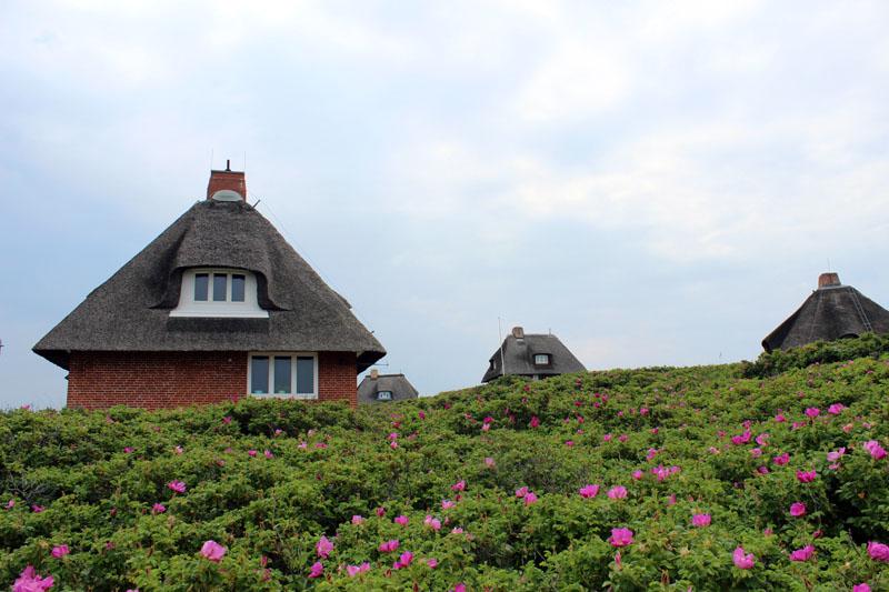 Hörnum-Sylt-Reisetipps-Blog45